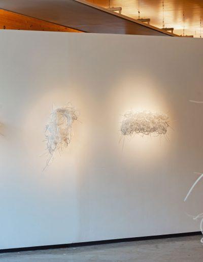 Fiona Hutchison, Think Plastic Exhibition